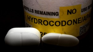 hydrocodone tolerance